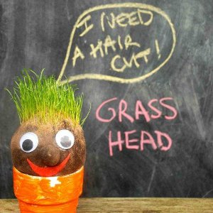 Silly Grass Heads
